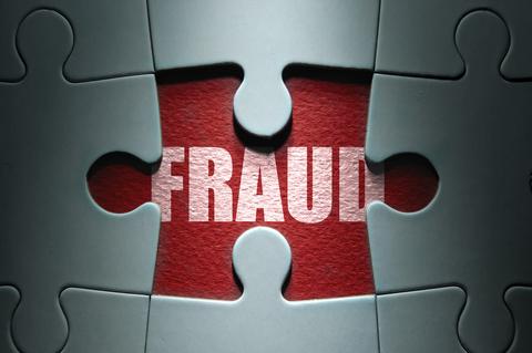 Fraud Puzzle